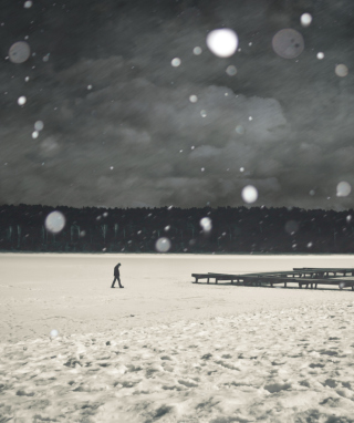 Alone Winter - Obrázkek zdarma pro 360x640