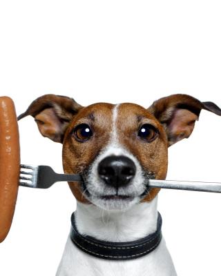 Dog with sausage - Obrázkek zdarma pro 480x854