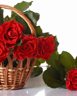 Basket with Roses - Obrázkek zdarma pro iPhone 4