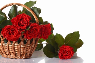 Basket with Roses - Obrázkek zdarma pro Android 1440x1280