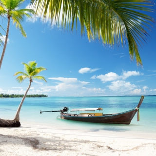 Tulum, Mexico Tropical Beach - Obrázkek zdarma pro iPad 2