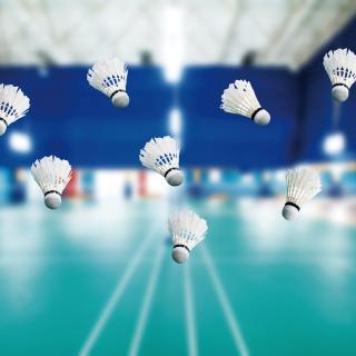 Badminton Court - Obrázkek zdarma pro iPad