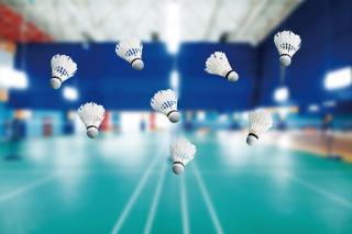 Badminton Court - Obrázkek zdarma pro Samsung Galaxy