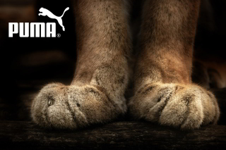 Puma Fluffy Logo - Obrázkek zdarma pro Motorola DROID