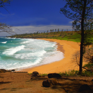 Donkey Beach on Hawaii - Obrázkek zdarma pro 208x208