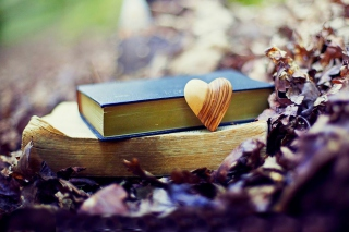Free Yellow Heart And Vintage Books Picture for Android, iPhone and iPad