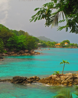 Baga Beach in North Goa - Obrázkek zdarma pro iPhone 5