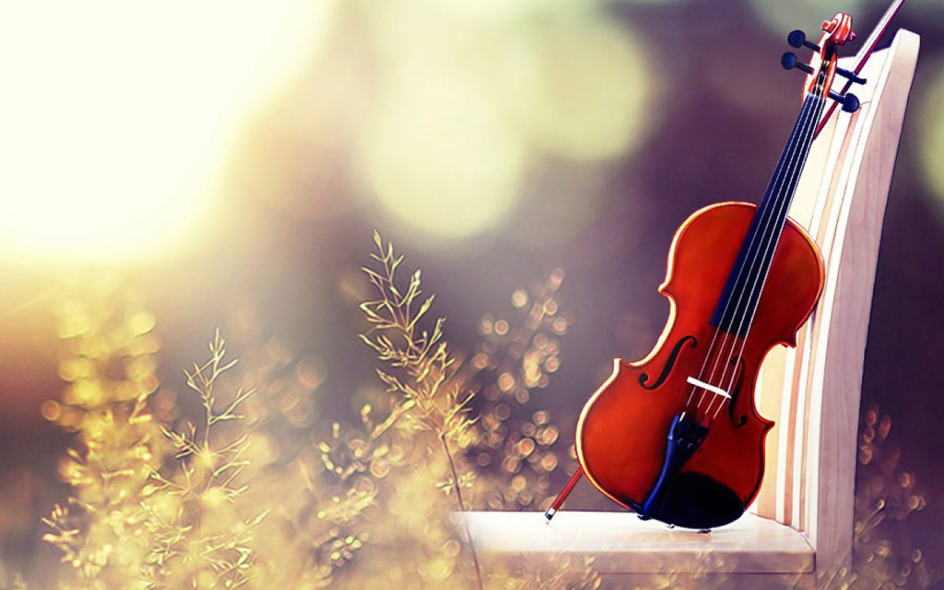 Violin Wallpaper for Widescreen Desktop PC 1920x1080 Full HD