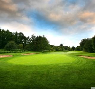 Golf Course - Obrázkek zdarma pro 208x208