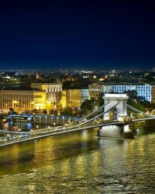 Budapest Danube Bridge - Obrázkek zdarma pro Nokia 300 Asha