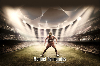 Manuel Fernandes - Obrázkek zdarma pro Sony Tablet S
