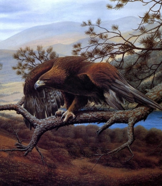 Eagle On Branch - Obrázkek zdarma pro 480x640