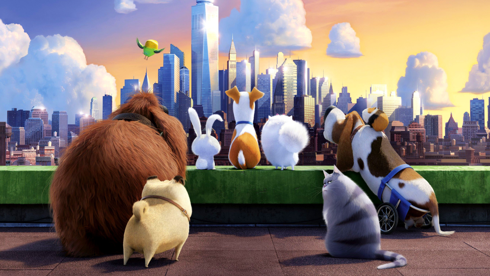 Secret Life Of Pets Wallpaper: The Secret Life Of Pets Gang Wallpaper For Desktop