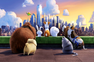 The Secret Life of Pets Gang - Obrázkek zdarma pro LG P500 Optimus One