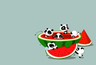Free Panda And Watermelon Picture for Android, iPhone and iPad