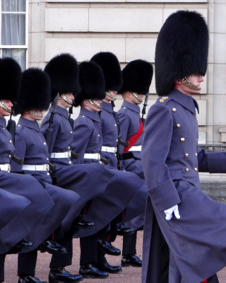 Buckingham Palace Queens Guard - Obrázkek zdarma pro Nokia X1-00