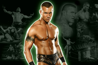 Randy Orton - Obrázkek zdarma pro Nokia Asha 205
