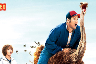 Blended Film with Adam Sandler - Obrázkek zdarma pro Widescreen Desktop PC 1920x1080 Full HD