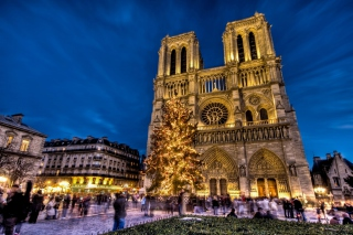 Notre Dame Cathedral Background for Android, iPhone and iPad