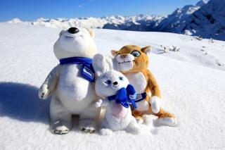 Winter Olympics Symbols - Obrázkek zdarma pro Sony Xperia M