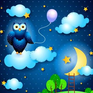 Night Owl - Obrázkek zdarma pro iPad mini