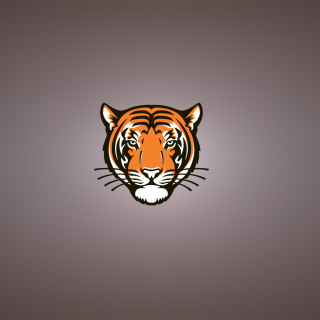 Tiger Muzzle Illustration - Obrázkek zdarma pro 208x208