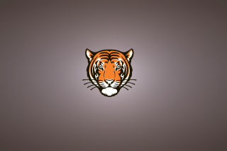 Tiger Muzzle Illustration - Obrázkek zdarma pro Nokia Asha 205
