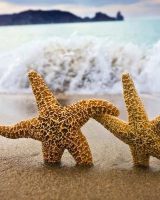Sea Stars Dance - Obrázkek zdarma pro Nokia Asha 308