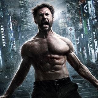 The Wolverine 2013 - Obrázkek zdarma pro 208x208