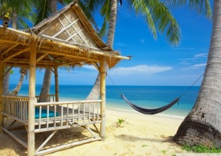 Tropical Resort Background for Android, iPhone and iPad