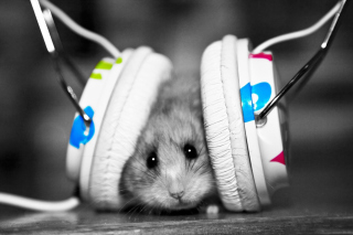 Dj Mouse Wallpaper for Android, iPhone and iPad