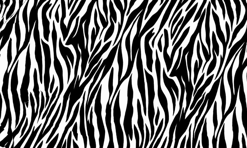 Zebra-Print-800x480.jpg