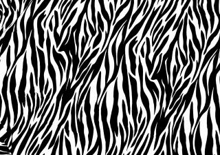 Zebra Print - Obrázkek zdarma pro Fullscreen Desktop 1400x1050