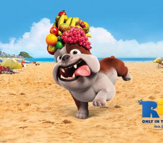 Luiz Bulldog in Rio - Obrázkek zdarma pro iPad mini