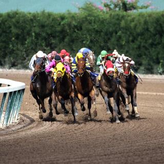 Jockeys Riding Horses - Obrázkek zdarma pro iPad 3
