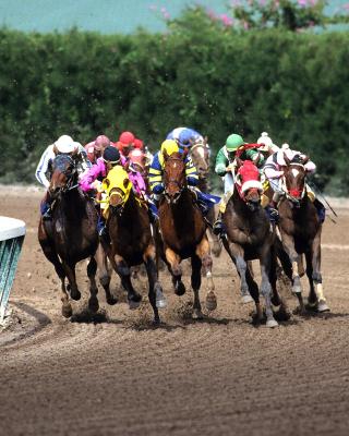 Jockeys Riding Horses - Obrázkek zdarma pro 320x480