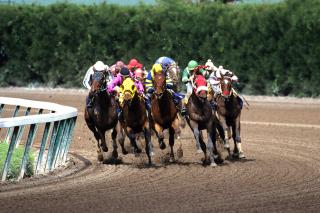 Jockeys Riding Horses - Obrázkek zdarma pro 1280x1024