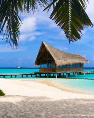 Bahamas Grand Lucayan Resort - Obrázkek zdarma pro iPhone 6