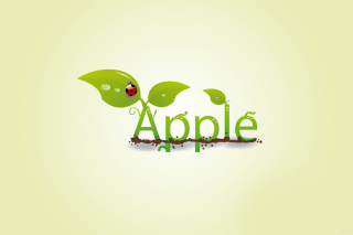 Free Summer Apple Picture for Android, iPhone and iPad