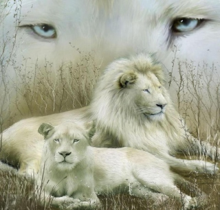 White Lions - Obrázkek zdarma pro iPad 2