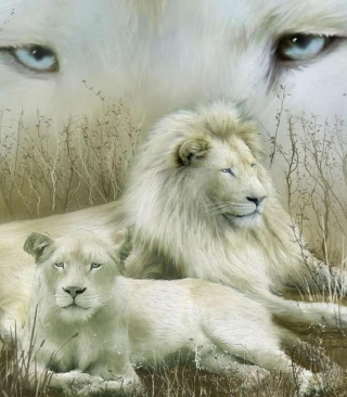 White Lions - Obrázkek zdarma pro Nokia C1-02