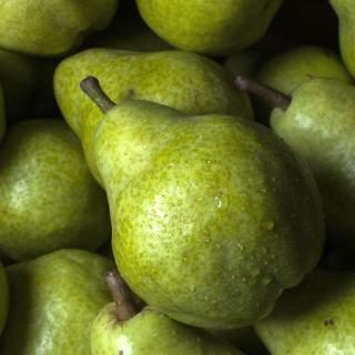 Fruit Pear - Obrázkek zdarma pro iPad mini