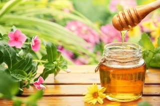 Free Honey Jar Picture for Android, iPhone and iPad