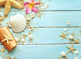 Seashells - Obrázkek zdarma pro 1152x864