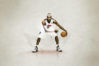 Nike USA Basketball - Obrázkek zdarma pro LG P970 Optimus