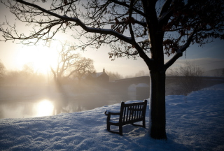 Bench Covered With Snow Picture for Android, iPhone and iPad