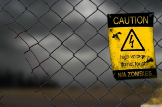 Caution Zombies, High voltage do not touch - Obrázkek zdarma pro Fullscreen Desktop 1024x768
