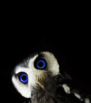 Funny Owl With Big Blue Eyes - Obrázkek zdarma pro 1024x1024