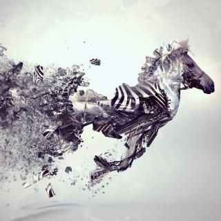 Digital Zebra - Obrázkek zdarma pro iPad Air