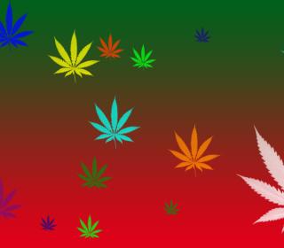 Weed Colours - Obrázkek zdarma pro iPad mini 2